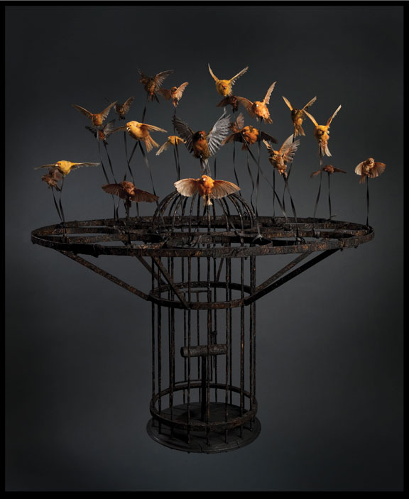 Polly Morgan, Systemic Inflammation, 2010; Taxidermy and steel, 51 1/8 x 44 1/2 x 44 1/2 in.; Private Collection, London; Photography by Tessa Angus