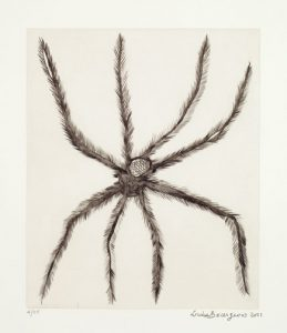 Louise Bourgeois, Hairy Spider, 2001; Drypoint on paper, 19 x 16 in.; On loan from the Holladay Collection; Art © The Easton Foundation/Licensed by VAGA New York; Photo by Lee Stalsworth