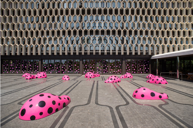 Kusama's Footprints of Life in Honolulu
