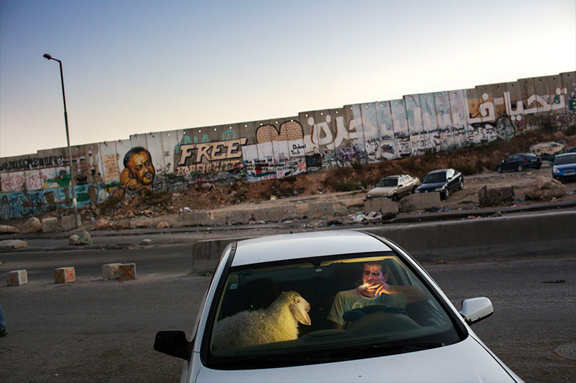 Tanya_Habjouqa_Occupied_Pleasures_Palestine_03