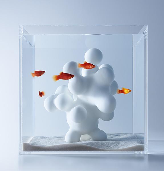 Colossal shares Haruka Misawa's aquariums