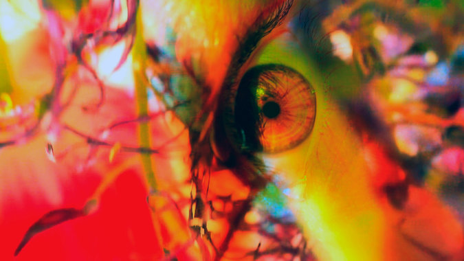 The New York Times explores Pipilotti Rist: Pixel Forest