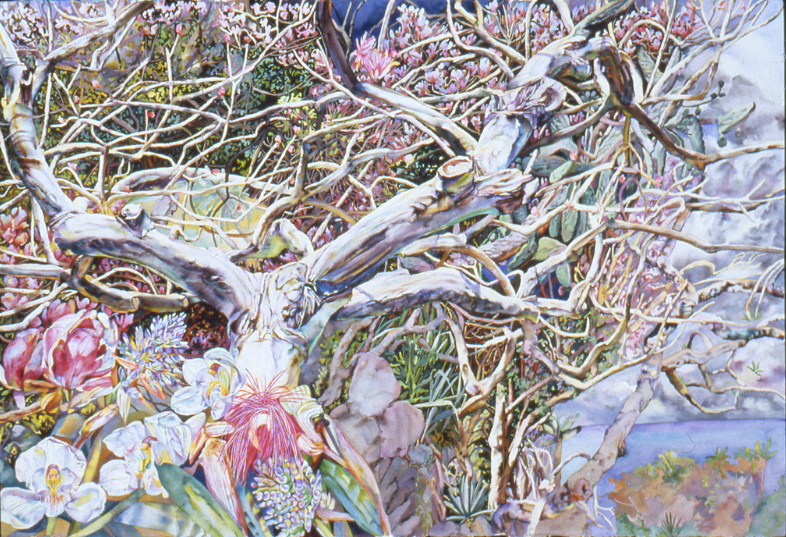 Patricia Tobacco Forrester, Barbados, 1995; watercolor, 46 x 66 in.; National Museum of Women in the Arts, Promised Gift of Steven Scott, Baltimore, in Memory of the Artist; © The Estate of Patricia Tobacco Forrester