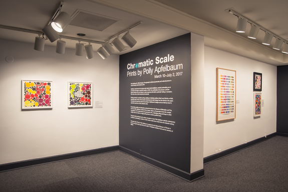 Installation view of Chromatic Scale: Prints by Polly Apfelbaum; Photo: Lee Stalsworth