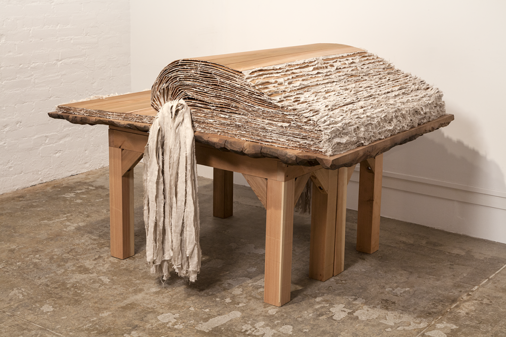 Von Rydingsvard departs from her towering forms with the delicate sculpture Book with no words II (2017–18). The empty, oversized tome comprises thin cedar pages bound with leather and linen. Here the artist may be representing the limits of language and all that is unnamable, encouraging the viewer's imagination to take flight.