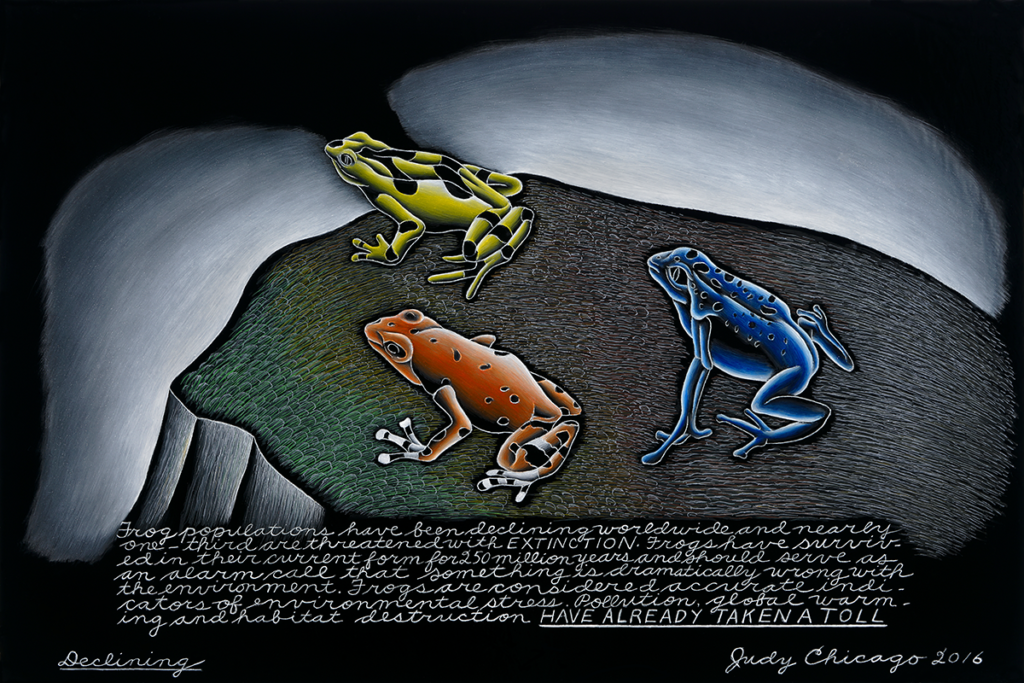 In Declining (2016), Chicago paints three frogs perched on a cliff facing a distant horizon. Underneath the illustration, she writes: Frog populations have been declining worldwide and nearly one-third are threatened with extinction. Frogs have survived in their current form for 250 million years and should serve as an alarm call that something is dramatically wrong with the environment. Frogs are considered accurate indicators of environmental stress. Pollution, global warming and habitat destruction have already taken a toll.