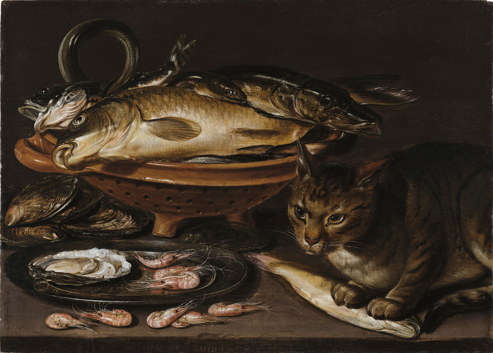 A brown ceramic colander holds several types of fish of varying sizes that lie stacked. In the foreground, a cat stands alert with its paws on a yellow fish. In front of the colander, a gleaming pewter dish holds shrimp and oyster shells. The surfaces all reflect and shine.