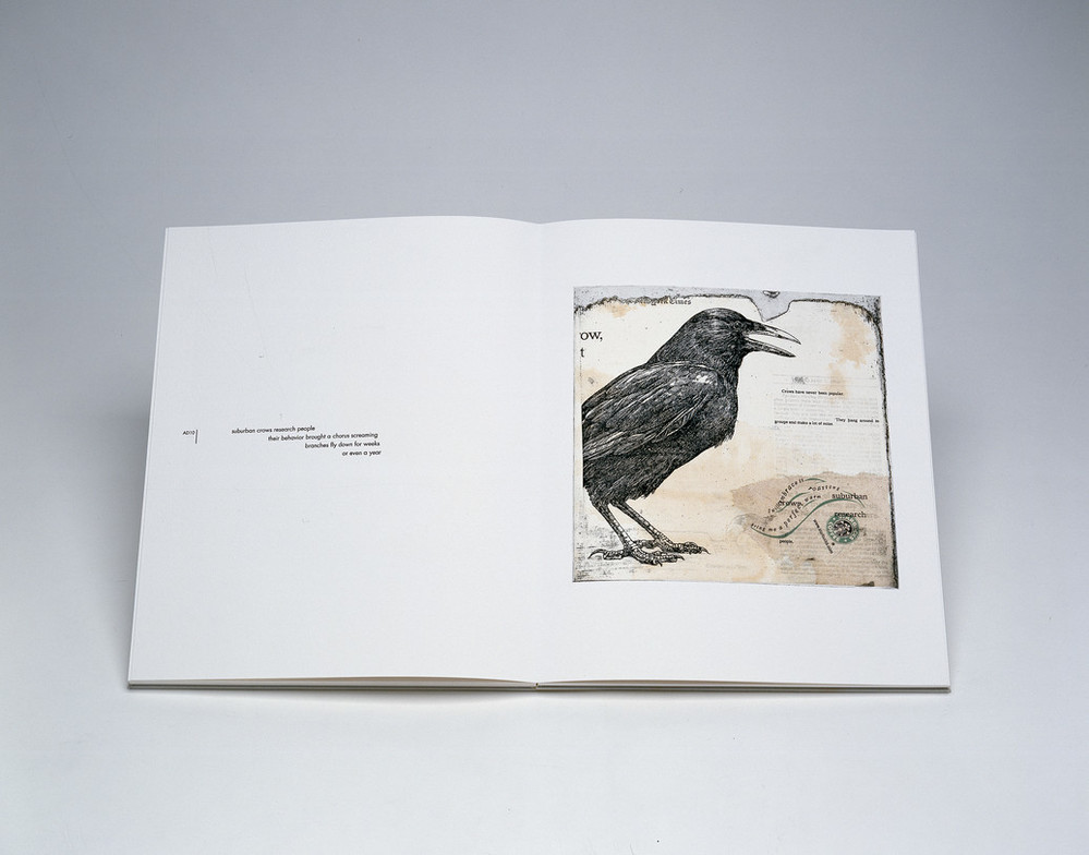 An open book shows a drawing of a crow in profile with beak partially open on the viewer's right side. On the viewer's left, the words,
