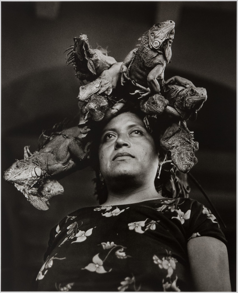 Black and white photograph of a Mexican woman looking off into the distance. She wears a floral blouse and five iguanas sit atop her head at different angles, as if she were wearing a crown.