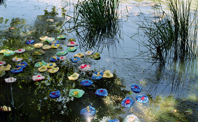 Detail of a large-scale color photograph depicting lilypads floating on a pond. Marsh grass and reflected sky on the water are disrupted by lilypads made from colorful, discarded plastic bags.
