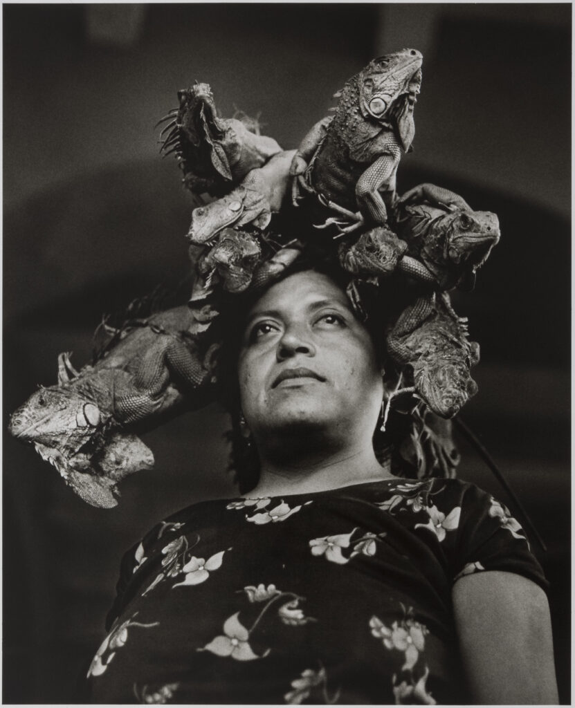 A black and white portrait of a woman gazing into the distance wearing a floral print dress. On her head are a group of large iguanas.