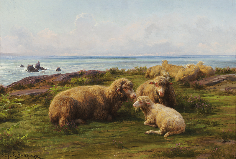 Longhaired sheep lounge on earthy grassland in front of a rocky shore and calm, pale blue sea. In the foreground, two large mature sheep with brown hair sit together with a  younger, white-haired sheep. Behind them, a group of four honey-colored sheep sit closer to the shore.