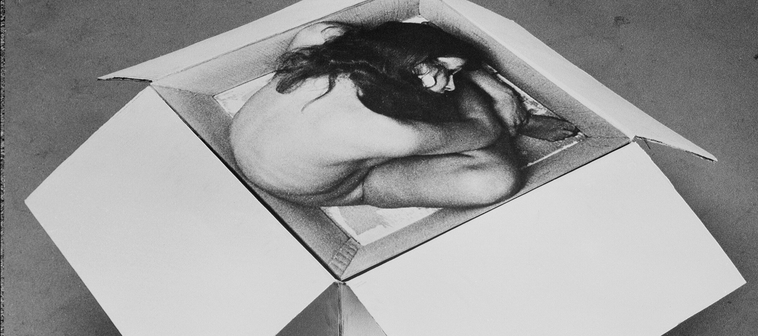 Kirsten Justesen, <i>Sculpture #2</i>, 1968/2010, Edition II, 1/5; Painted cardboard box and screened photograph, overall: 20 in x 24 in x 24 in.; Gift of Montana A/S