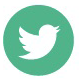 Green circle with a white outline of the Twitter logo