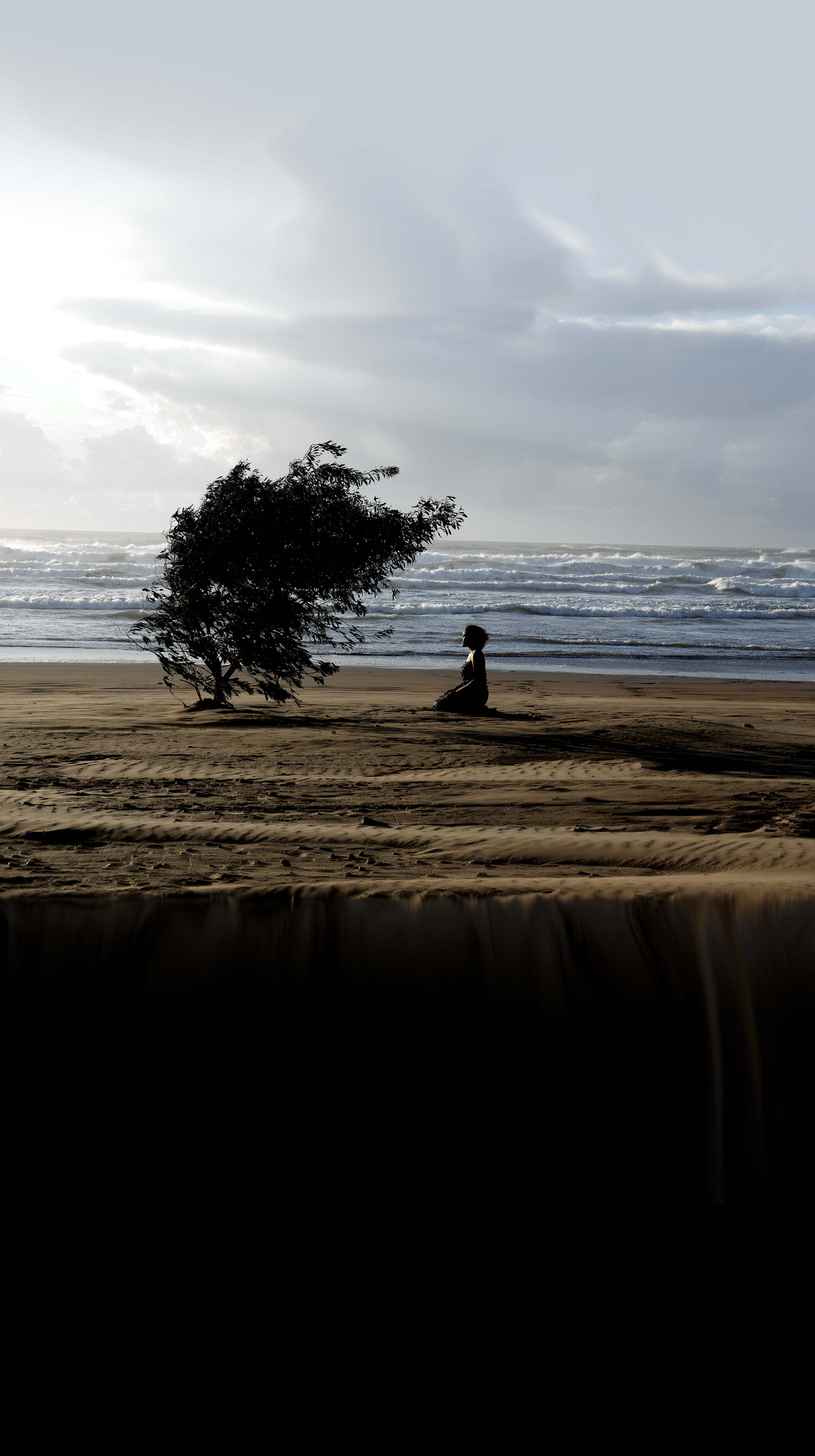 Tall photograph of a beach near sunset. The sky fades into the beach, which fades into darkness for the bottom third of the photograph. The focal point is a single tree in shadow with a figure kneeling below its branches.