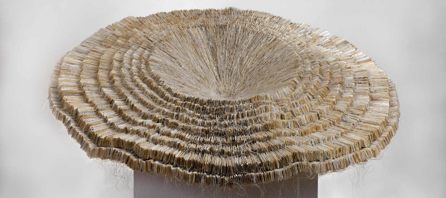 Sculpture made of layers of paper that opens like a forest mushroom.