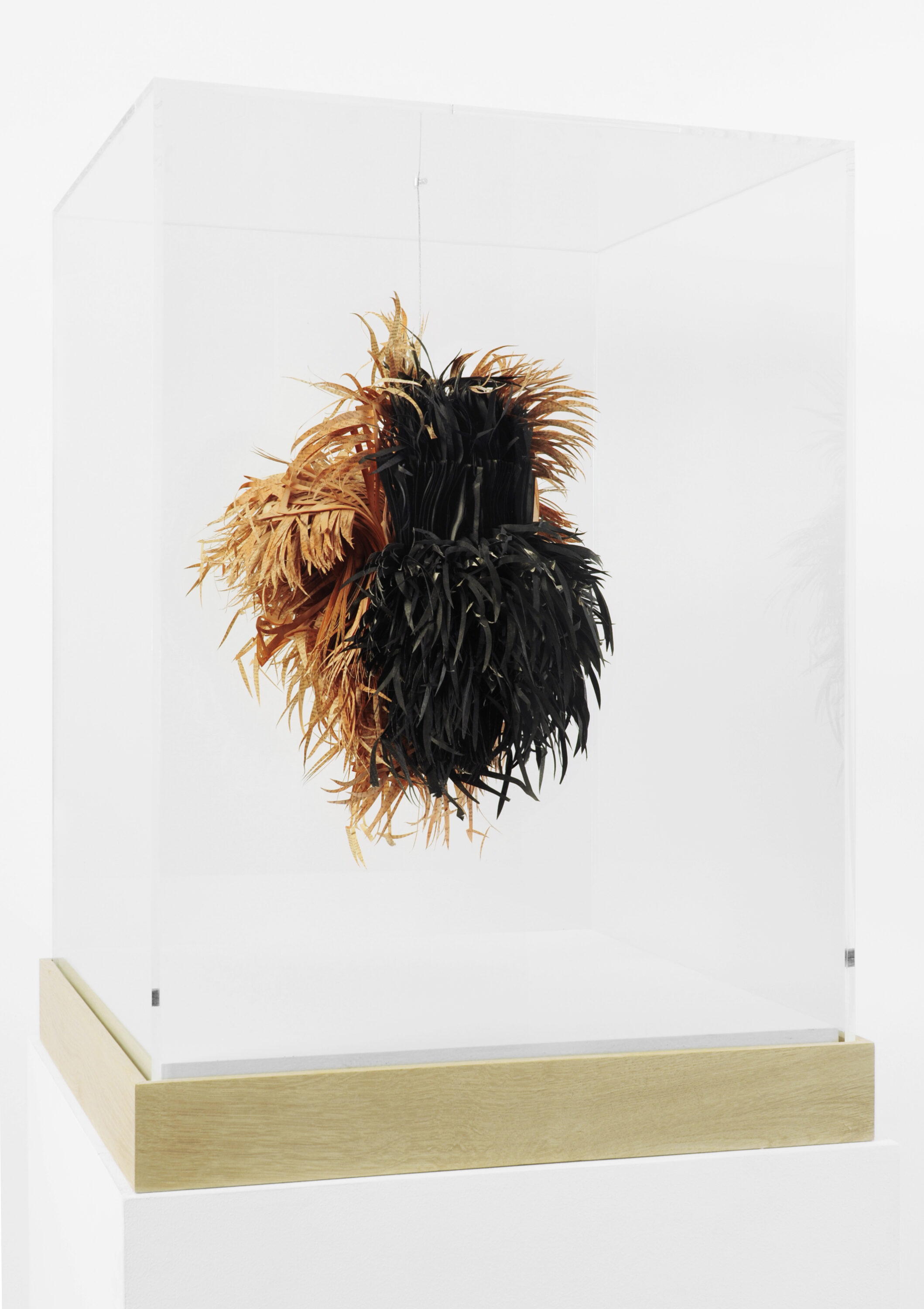 An abstract sculpture made of sliced pages of books hangs in a glass vitrine. The half black and half straw-colored slices look like a mass of hay