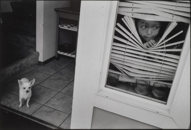 A black and white photograph of a young girl peering through slatted blinds to look out a window. Her gaze goes to the right of the frame. To her left, and on the other side of the window, a small white dog stands on a tiled floor.