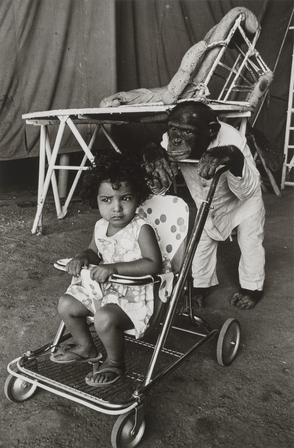 A black-and-white photograph of a medium-dark skinned toddler seated in a stroller being pushed by a clothed chimpanzee wearing white pants and a button-up shirt. The child has short, dark, curly hair and wears a light colored sundress, and appears apprehensive.