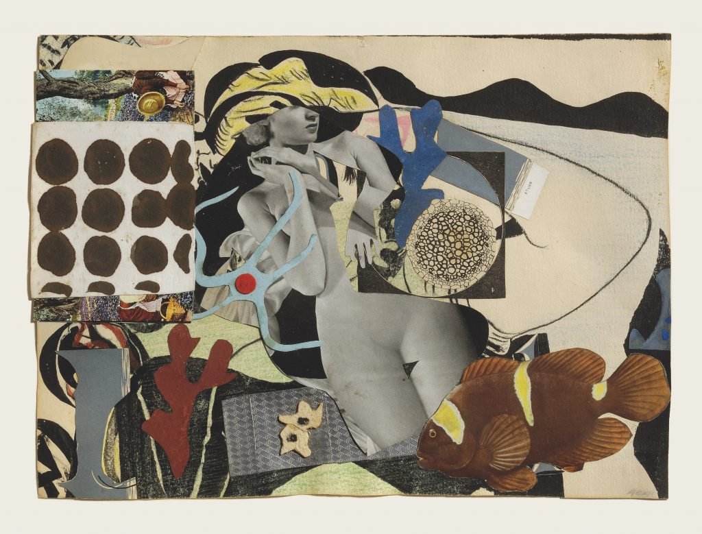 A collage of various images including a tropical fish, a naked woman statue, and other abstract forms and shapes.