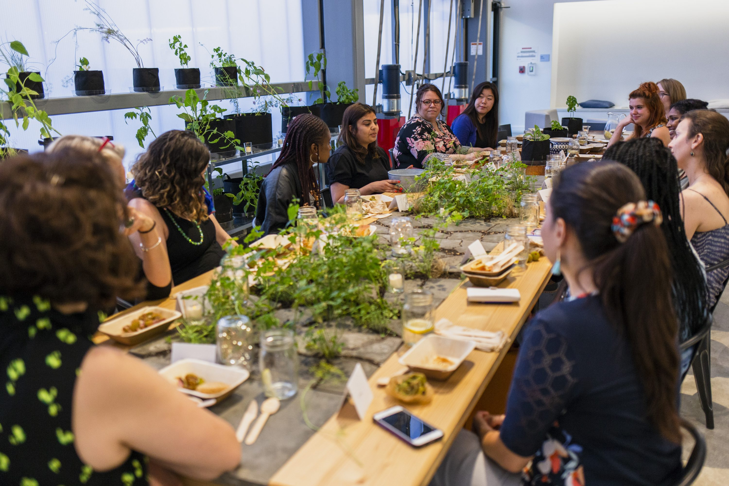 A diverse group of women sit around a long wooden table set with food and a long centerpiece of green, leafy plants sprouting out of gray rocks. Behind them are shelves of green plants growing near a wall of windows, and a white wall.