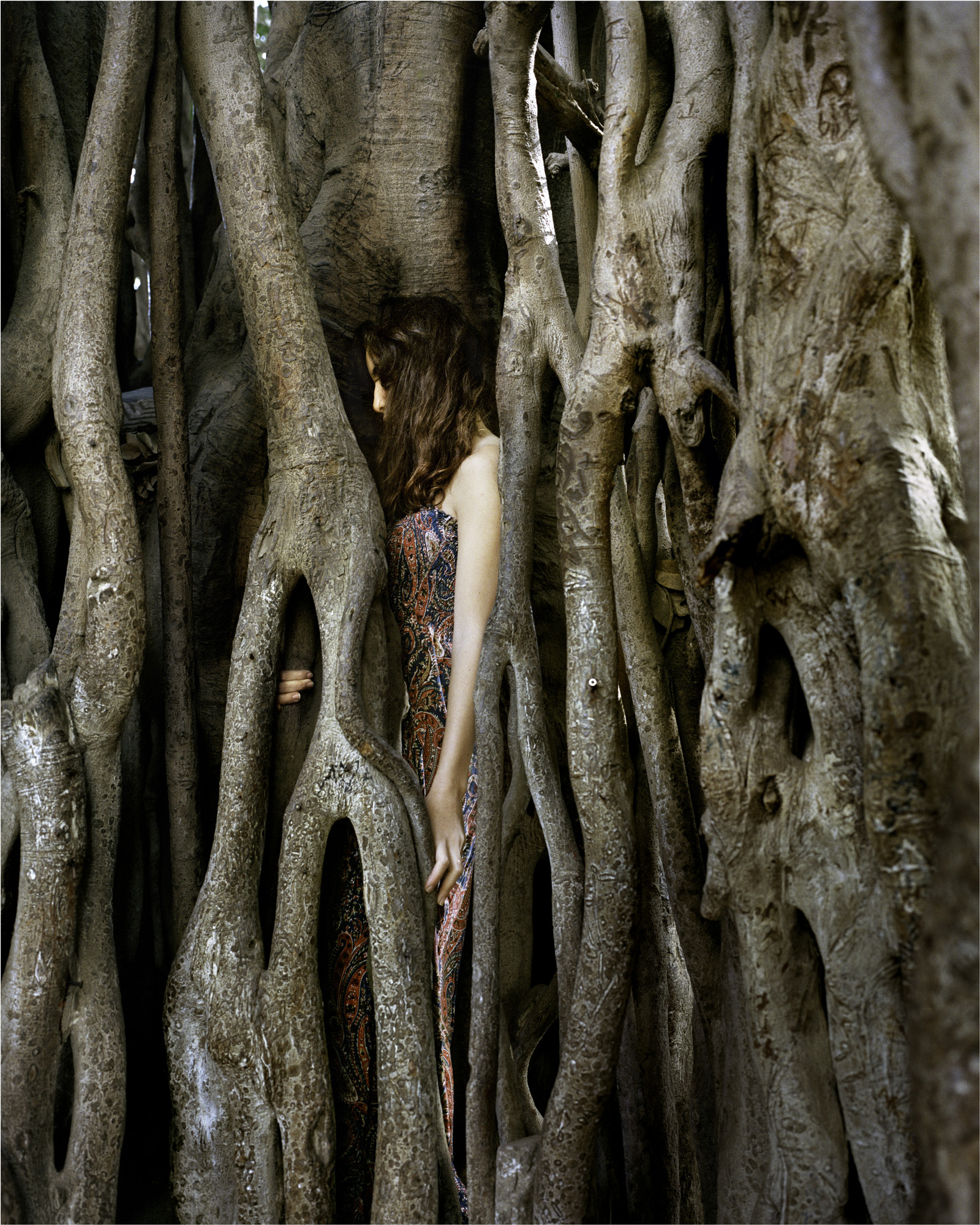 Close cropped color photograph of a light-skinned woman with auburn hair standing tucked into the large roots of a tree. The woman in standing in profile and her head is bent with her hair covering her face.